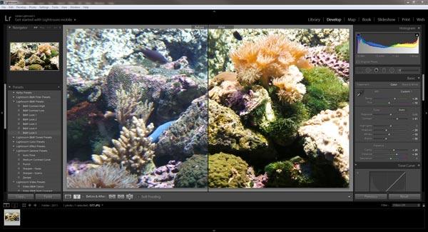 Bildbearbeitung in 60 Sekunden mit Adobe Lightroom